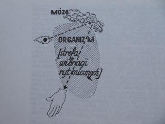 STRZEMIŃSKI WŁADYSŁAW - Teoria widzenia