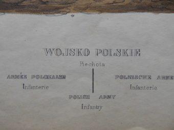 [Lewicki Jan Nepomucen]. Zienkowicz Leon - WOJSKO POLSKIE. PIECHOTA [stroje polskie, litografia]