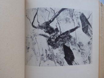MARCZAK-OBORSKI STANISŁAW - Poezje [ilustracje Zbigniew Dłubak]