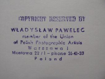PAWELEC WŁADYSŁAW - Akt [vintage print, sygnowany]