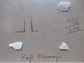 KAMOJI KOJI - Kompozycja