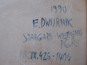 DWURNIK EDWARD - Stargard Szcz [olej na płótnie]