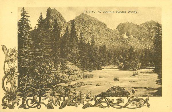 Tatry. W dolinie Białej Wody [pocztówka]