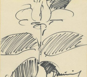 DOMINIK TADEUSZ - Róża [rysunek sygnowany]