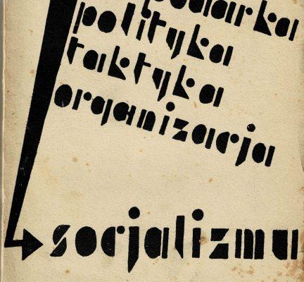 praca zbiorowa Gospodarka, polityka, taktyka, organizacja socjalizmu