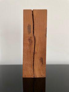 SZEWCZYK ANDRZEJ - Diariusz [ołów na drewnie]