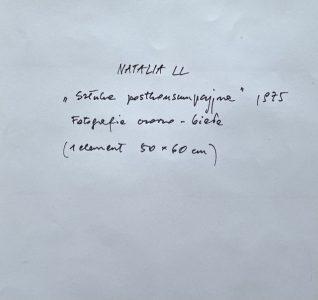 NATALIA LL - Sztuka postkonsumpcyjna 1975 [druk sygnowany]