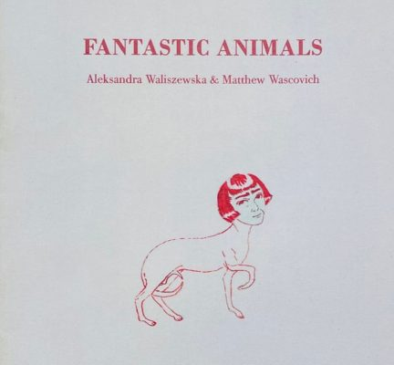 WALISZEWSKA ALEKSANDRA, MATTHEW WASCOVICH Fantastic animals